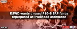 DSWD wants unused P10-B SAP funds repurposed as livelihood assistance